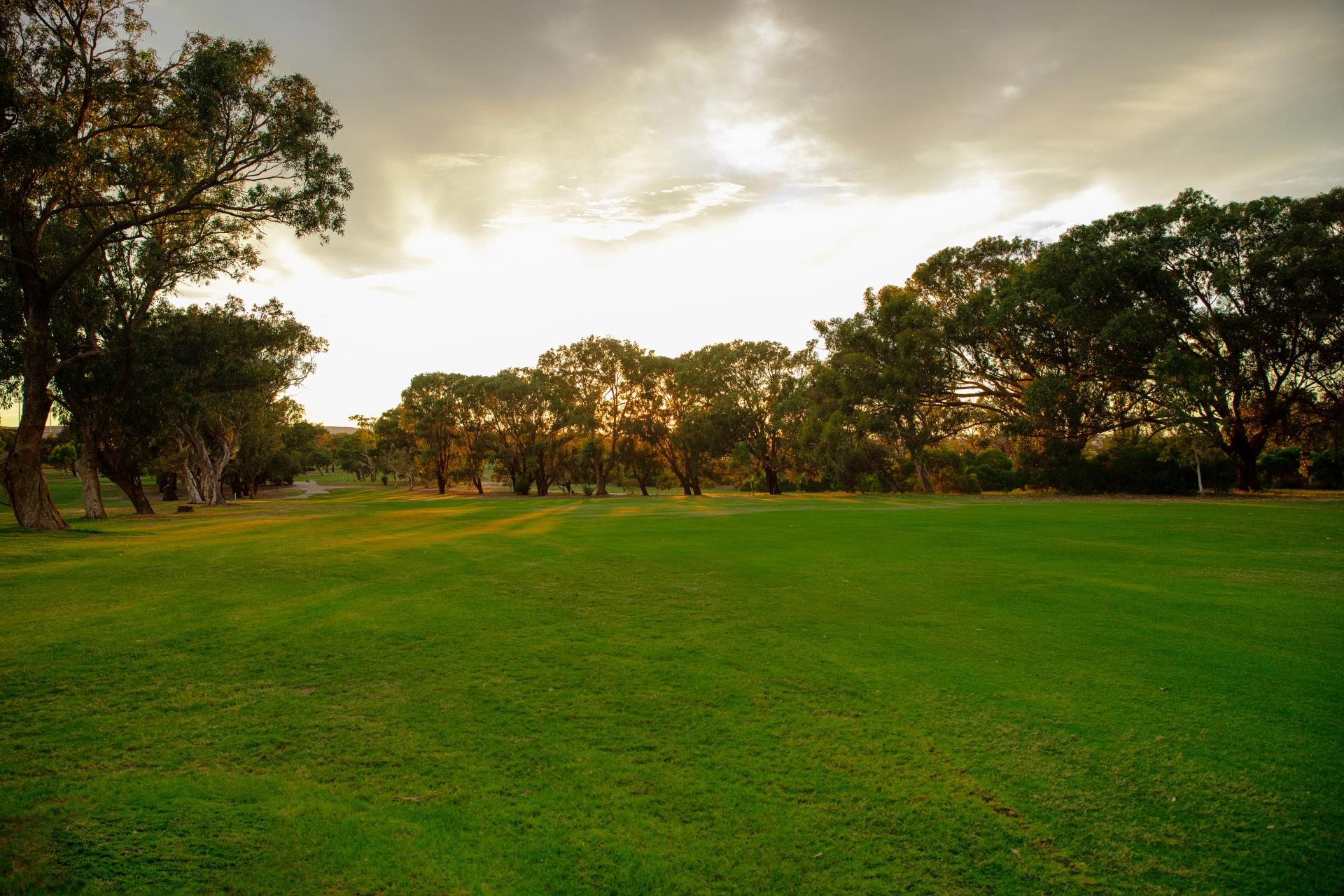 Banner - Range  » Geraldton Golf Club